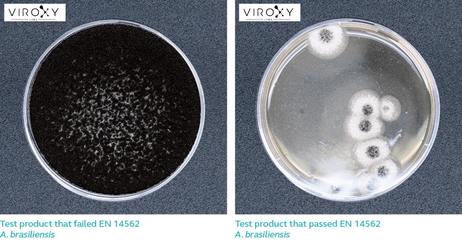 Difference between test product that pass & fail EN 14562 for A. brasiliensis